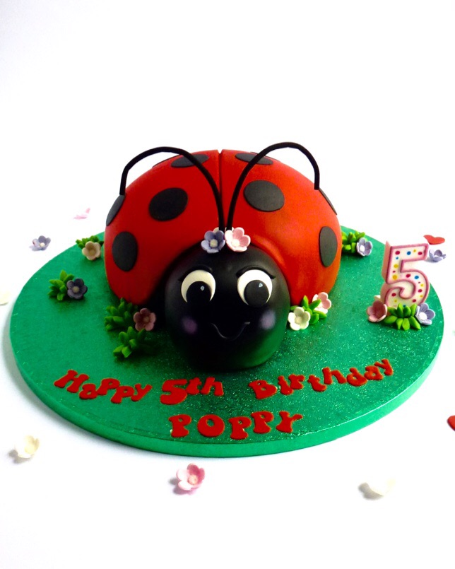 This Ladybird Cake Comes On A 35cm Board It Can Be Ordered In Vanilla Genoese Or Belgian Chocolate And Will Give Approximately 30 To 35 Portions